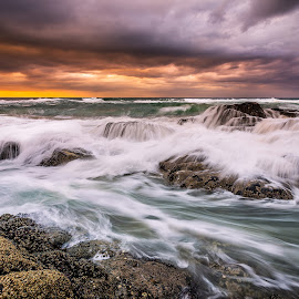 by Andrew Harvard - Landscapes Waterscapes (  )