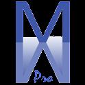 Memory Mirror Pro icon