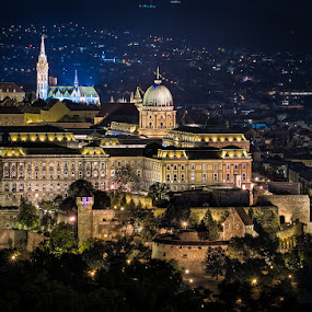 The Buda Castle by Matthew Haines - City,  Street & Park  Night ( city, night,  )