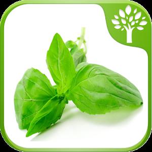 Download Home Remedies - Natural Cure APK