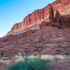 Coral Reef Scene by Jim Downey - Landscapes Deserts ( geology, balance, morning color, utah, focal point )