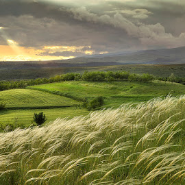 April by George Petridis - Landscapes Mountains & Hills ( hills, sky, april, grass, green, landscape, spring, rays, fields )