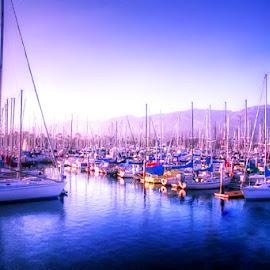 Marina by Sylvia Smialkowska - Transportation Boats ( harbor, boats, transportation, marina )