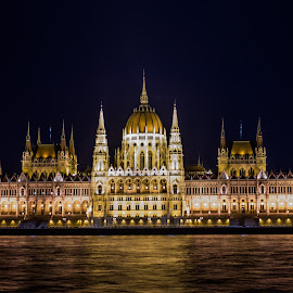 Budapest at Night by Roland Bast - Buildings & Architecture Public & Historical ( parliament, budapest, canada, nightshot, travel photography, cannon )