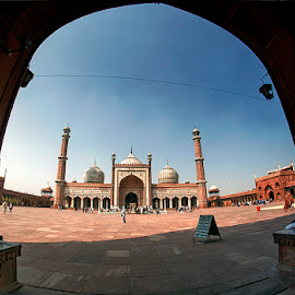 Jami Masjid @ Old Delhi by Syarif Rohimi - Buildings & Architecture Places of Worship (  )