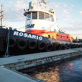 The Rosario by Dana Styber - Transportation Boats ( water, washington, tugboat, cap sante marina, boats, anacortes, sunny afternoon, docks )