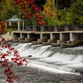 Rockford Dam by Laura Robles - City,  Street & Park  City Parks ( water, michigan, autumn, waterfall, dam, leaves, gazebo, rockford, berries, fall, color, colorful, nature )