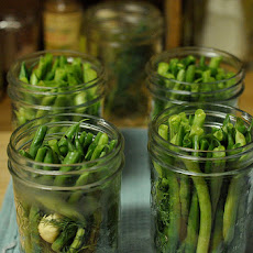 Pickled Green Beans (aka Dilly Beans)