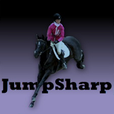 Equestrian Jumping Exercises