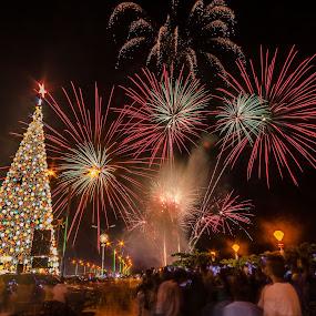 by Jessie Lebante - City,  Street & Park  City Parks ( fireworks, fire, new year, dipawali, diwali, 2014 )