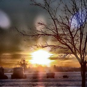 Winter sunset by Zlatko Sarcevic - Landscapes Sunsets & Sunrises ( winter, hdr, sunset, landscape, golden hour, sunrise )