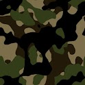 FM 21-75 Combat Skills icon