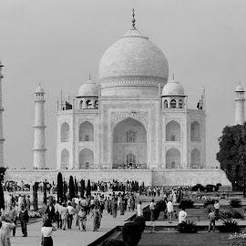 The Taj by Adjie Tjokrosoedarmo - Buildings & Architecture Public & Historical ( people, crowd, humanity, society )