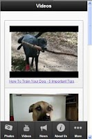 Screenshot of Dog Training Secrets
