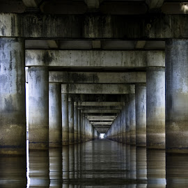 Under the Basin Bridge by Steve Smith - Buildings & Architecture Bridges & Suspended Structures ( bridge reflections repetition, atchafalaya, louisiannabasin swamp i10 int,  )