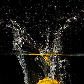 My Lemon Splash by Syahrul Nizam Abdullah - Food & Drink Fruits & Vegetables