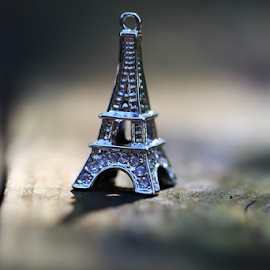 by Dipali S - Artistic Objects Other Objects ( eifel tower, macro, toy, jewelry, close up )