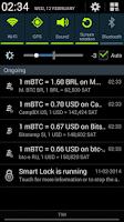 Screenshot of Bitcoin Paranoid
