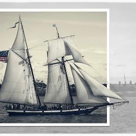 Sailing into history by Deborah Felmey - Transportation Boats ( fort mchenry, sailing, pride of baltimore, fort, boat, historic, schooner, war of 1812 )