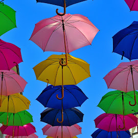 Umbrellas In The City 4 by Marco Bertamé - City,  Street & Park  Street Scenes ( umbrellas, colorful,  )