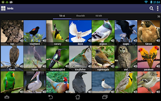 Screenshot of E-V Picture Dictionary