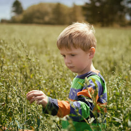 Oat Field [1]  by Dominic Lemoine Photography - Babies & Children Children Candids ( sky, trees, bokeh, boy, oat )