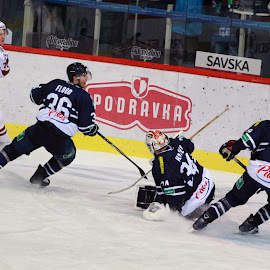 In Action by Karlo Teur - Sports & Fitness Ice hockey ( khl, hockey, ice, action, medvescak, dinamo riga )