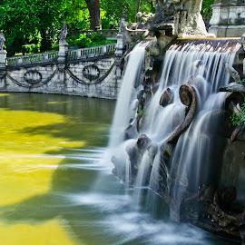 Silky fontain by Florin  Galan - City,  Street & Park  Fountains ( park, valentino, street, turin, fontana,  )