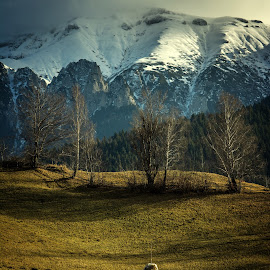 by Alexandru George - Landscapes Mountains & Hills