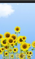 Screenshot of ♥ Sunflowers Free
