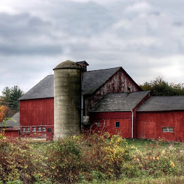 Better Off Red by Kim Thomas-Hein - Buildings & Architecture Other Exteriors ( field, farm, barn, autumn, fall, landscape )