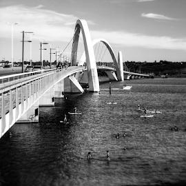 JK bridge by Eloa Defly - Buildings & Architecture Bridges & Suspended Structures ( brazil, instagram, bresil, brasilia, bridge, bnw, bridges, brasil,  )