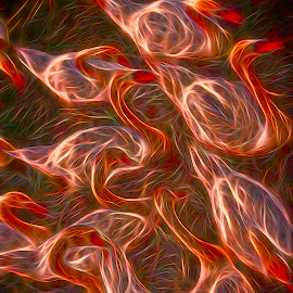 Russet Swans by Jack Torcello - Digital Art Animals ( abstract, swans, red, psychedelic, russet )