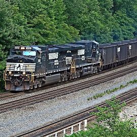 Coal at Cassandra by Troy Bankus - Transportation Trains ( rails, norfolk southern, coal, summer, train )