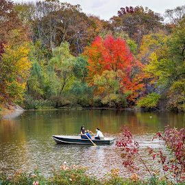 Fall in Love with New York by Robert Santos - City,  Street & Park  City Parks ( nature, park, autumn, fall, lake, nyc, new york, ny, central park, boat )