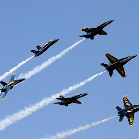 Blues on blue by Drew Tarter - Transportation Airplanes ( aviation, naval aviation, f-18 hornet, us navy, airshow, blue angels )