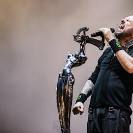 Korn by Stéphane zOz - People Musicians & Entertainers ( sziget, music, concert, budapest, metal, zoz, singer, rock, festival, korn, portrait, live )