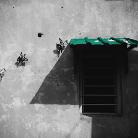 Wire art. by Jemmie Chew - Buildings & Architecture Architectural Detail ( old, window, street, nanyang, penang, malaysia, wire art, selective color, pwc )