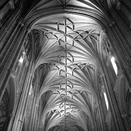 Gothic vaulting by Aliy Fowler - Buildings & Architecture Architectural Detail ( gothic, ceiling, perpendicular gothic, cathedral, vaulting,  )