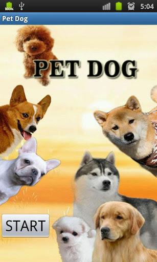 狗狗幼兒動態教學