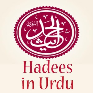 english to urdu dictionary app for pc
