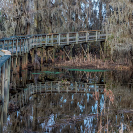 Swamp Bridge by Phillip Gandy - City,  Street & Park  City Parks ( sony, nex6, augusta, swamp )