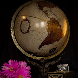 Capturing life  by Tammy Arruda - Artistic Objects Still Life ( book, flowers, photo, world, globe )