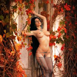 Reds by Sergey Ostapovsky - Nudes & Boudoir Artistic Nude