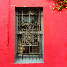 Salisbury Street by Martha van der Westhuizen - Instagram & Mobile iPhone ( shop, windowm red wall, decorative, burglar bars, motif )
