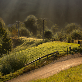 Mornings in Pestera village by Andrei Grososiu - Landscapes Mountains & Hills ( forest, romania, sunrise, road, light, pestera )