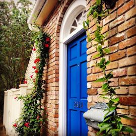 Blue Door by Tara Bauman - Buildings & Architecture Other Exteriors (  )