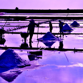 Working on the salt field by Alegna Nehc - Landscapes Prairies, Meadows & Fields ( salt field, hard workers, workers, salt water, salt )