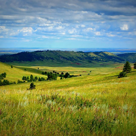 My Favorite View by Mark Stites - Landscapes Prairies, Meadows & Fields