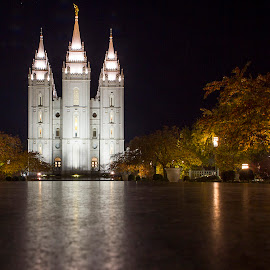SLC Temple by Amit Aggarwal - Buildings & Architecture Places of Worship ( reflection, night view, lehi, utah, buildings, slc, trees, us, architecture, usa, salt lake city, united states )